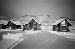 2017北海道二世谷 (OuDong) Tags: ricoh gr1 kodak tx400 bw japan hokaido niseko ski