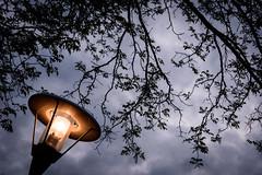 Nearly Night (NathalieSt) Tags: europe france hérault lagrandemotte languedocroussillon occitanie borddemer cloud clouds nikon nikond750 nikonpassion nikonphotography nuage nuages seaside