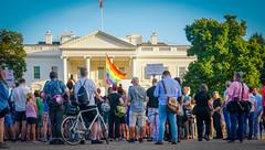 2017.07.26 Protest Trans Military Ban, White House, Washington DC USA 7637