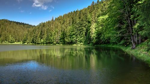 Synevyr Lake beauty