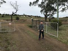 All set (Stinkee Beek) Tags: australia tasmania hobart heatherbellcottage ethan