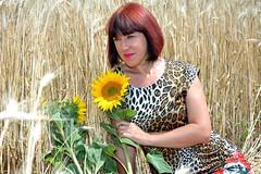DCS_3848_00037 (dmitriy1968) Tags: portrait портрет nature природа erotic sexsual эротично beautiful girl wife люди people evening придонье девушка отдых путешествия outdoor секси пшеница wheat солнечный день sunny day