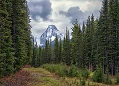 Commonwealth Peak (Philip Kuntz) Tags: commonwealthpeak spraymountains smithdorienvalley kananaskis kananaskiscountry peaks mountains canmore alberta canada