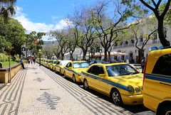 2017 SPM1603 Taxis in Funchal, Madeira, Portugal (teckman) Tags: 2017 funchal madeira portugal pt