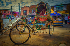 Cycle Rickshaw @ TD Festival of South Asia (A Great Capture) Tags: transportation toronto littleindia east gerrardstreet agreatcapture agc wwwagreatcapturecom adjm ash2276 ashleylduffus ald mobilejay jamesmitchell on ontario canada canadian photographer northamerica torontoexplore summer summertime été 2017 rickshaw bike cycle bazaar india traditional festival