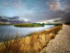 Dakota wetland 10 (mrbillt6) Tags: landscape rural prairie wetlands road island pond waters outdoors scenic country countryside northdakota