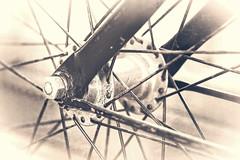 Vintage (Daniela 59) Tags: 100x2017 100xthe2017edition image95100 theworldaroundme flickrfriday madenomore old vintage wheel bicycle bicyclewheel spokes monochrome danielaruppel