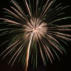 Green Power (H.H. Mahal Alysheba) Tags: japan firework tokyo night nikon d800 afs nikkor 2485mmf3545