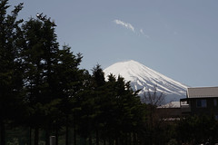 Mount Fuji, peeping mountain (aartsyfarty) Tags: japan odaiba harajuku japanlife japanstreets shinjuku shibuya shibuyacrossing mtfuji mtfuji5thstation japanheritagecenter