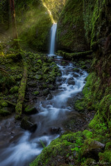 Pure (Aron Cooperman) Tags: april2016 aroncooperman columbiarivergorge escaype landscape openlightphoto oregon wbpa waterfalls nikond800 mossy grotto mossygrotto green gorge lightrays river waterfall water rocks ferns
