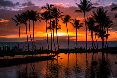 And We Fell (Thomas Hawk) Tags: grandwailea hawaii maui wailea waldorfastoria waldorfastoriagrandwailea beach clouds humuhumu humuhumunukunukuapuaa palmtree restaurant sunset tree fav10 fav25 fav50 fav100