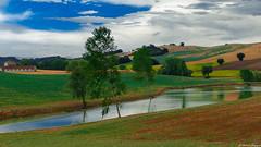 I colori delle colline marghigiane (BORGHY52) Tags: luglio marche estate paesaggio paesaggioagreste paesaggiitaliani paesaggi fotopaesaggibellissimi landscape beautifullandscapes italy collina colline collinemarchigiane