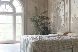 Chestnut Manor