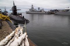 Moored submarine (Monika Kalczuga (on&off)) Tags: zrmsbruinvis dutchnavy navy submarine marineschepen defense onderzeeboat koninklijkemarine defensie warship boat ship vessel denhelder netherlands holland