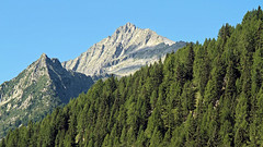 Mt. Re di Castello (ab.130722jvkz) Tags: italy trentino lombardy alps easthernalps rhaethianalps adamellopresanellaalps mountains