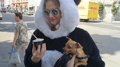 Eis essen hmm (Renate Bomm) Tags: eis dog hund renatebomm smartphone street streetview girl sommer huaweivtrl09
