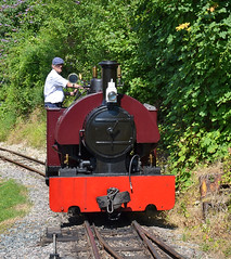 Here comes Peter! (davids pix) Tags: peter bagnall 2067 1917 narrow gauge 20 preserved industrial steam locomotive amberly museum sussex 2017 08072017