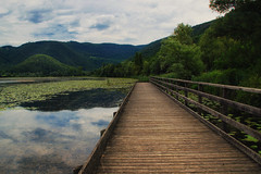 Reflections (SophieHazel) Tags: water nature bridge reflection sky clouds path