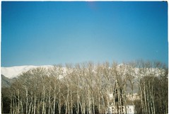Winter Tehran in 35mm - Jan 2017 (grassybrownie) Tags: landscape mountain mountains tree trees forest sky skyline skyporn nature natural nofilter sun sunset sunshine sunlight film fujifilm kodak lomography lomo 35mm photography photo photographer hills blue leaves light dark clouds cloud beauty beautiful paradise snow scenery shadow streets art artist arts artsy earth plants planet finearts travel trip roadtrip road winter cold color colorful colors red white yellow doubleexposure black
