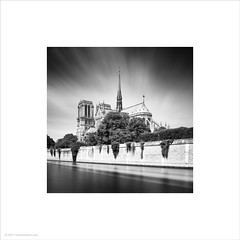 Notre Dame Cathedral (Ian Bramham) Tags: notredame cathedral paris riverseine