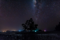 So Far Away (bdrc) Tags: 1116 apsc a6000 alpha asdgraphy darksky earth galaxy johor longexposure malaysia mersing milkyway nature night sony stars tokina tripod ultrawide trip travel landscape scenery astro sky space
