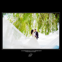 Wedding Day (Studiosedef) Tags: kiss love kids wedding smile mood green spring veil art photo pics beautiful picoftheday photooftheday composition capture dugun dismekandugun profesyonelfotografci hochzeit kuss lachen grün foto schön fotodestage zusammensetzung summer professionalweddingshooting alifuatsari studiosedef