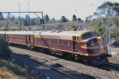 4204 at Wentworth Falls (Matt (thebigman)) Tags: nsw rtm heritage 36class 42class steam