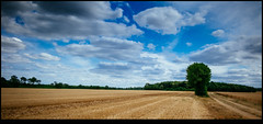 170624-2518-XM1.jpg (hopeless128) Tags: path france sky eurotrip fields tree 2017 clouds nanteuilenvallée nouvelleaquitaine fr