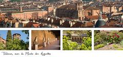 21,5x10cm // Réf : 10030753 // Toulouse