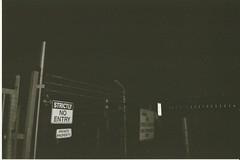 16 (Hi I'm Britt) Tags: film 35mm 35mmfilm kodak kodak400tx kodak400 blackandwhite istillshootfilm shootfilmstaybroke nikon nikonaf240sv filmphotography filmisnotdead filmsnotdead nature flash buildings trees sky nighttime palmtrees neon scans abbotsford abbotsfordconvent melbourne victoria australia cbd