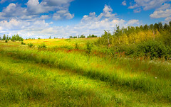 In the countryside (svklimkin) Tags: landscape meadow grass green summer clouds nature svklimkin russia