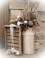 R. A. Farrow 1968 (rustyruth1959) Tags: nikon nikond3200 tamron16300mm uk lancashire ribchester ribblevalley sepia stilllife ssc saturdayselfchallenge flowers church box milkchurn rafarrow1968 churchofstpeterandstpaul wedding door building stone arrangement flora vignette roses