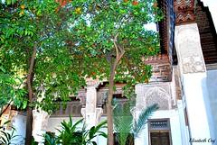 MAROCCO 01-2015- 041 (Elisabeth Gaj) Tags: maroco012015 elisabethgaj marocco afryka marrakech travel bahiapalace architecture building