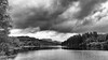 Loch Ard & Forest (AdMaths) Tags: adammatheson adammathesonphotography aberfoyle lochard forest lochardforest lochlomondnationalpark trossachs mountainbiking mountainbike mtb motorola motorolamotog motog cameraphone phone forestrycommission forestrycommissionscotland scotland scottishlandscape scottish scenery scene scottishscenery landscape mono monochrome blackwhite bw blackandwhite stirlingshire stirling