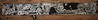 tresn (Dieta_1) Tags: tag piece long tresen kneipe bar club drinks barkeeper greenhouse wholecar crew gang flirt woman girl sexy illustration urban character comic dieta mad art artist friedrichshain berlin crack underground drawing pen black white bw