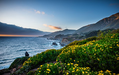 Big Sur ,California (Rick Vega) Tags: 2470tamron d750 nikon photography landscape california ocean water pacific flowers sunset cliffs coast rt1 pacificcoasthighway pch bigsur