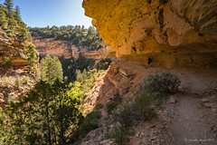 Cliff Springs Trail (NettyA) Tags: 2017 grandcanyon grandcanyonnationalpark northrim sonya7r usa travel cliffsprings trail hike overhang cliff sandstone geology rock track arizona hiking hiker