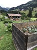 Narandi Permaculture, Kleinwalsertal, Vorarlberg, Austria