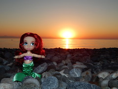 Ari in Turkiye (Lindi Dragon) Tags: doll disney disneyprincess disneystore dolls ariel mermaid little turkey
