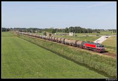 CT 1618 - 47702 (Spoorpunt.nl) Tags: 21 juli 2017 captrain 1618 trein 47702 moordrecht