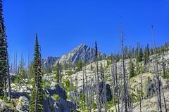 "Lick Creek Road (jimgspokane) Tags: lickcreekroad idahostate mountains camping mountainroads ""nikonflickraward"""