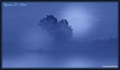 Landscape in blue - Luglio-2017 (agostinodascoli) Tags: art digitalart digitalpainting photoshop creative landscape blu alberi nature texture nikon nikkor cianciana sicilia agostinodascoli