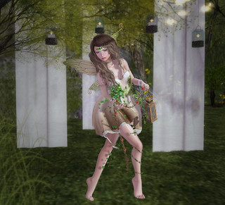 The Mysterious Forest + More
