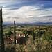 Close to Montepulciano, Italy. (wojszyca) Tags: mamiya rz67 6x7 120 mediumformat 110mm polariser gossen lunaprosbc epson v800 agfa agfachrome rsx ii 50 italy tuscany landscape may2017