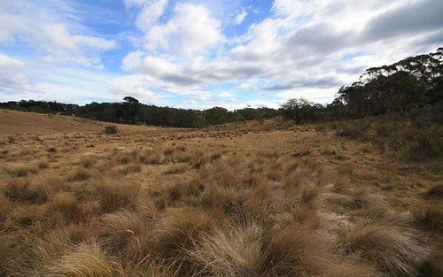 LOT 1 - 3934 BADJA ROAD, Cooma NSW