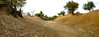 Nouhou river (CIFOR) Tags: africa dry burkinafaso river environmentalimpact soil boromo cifor climatechange horizontal