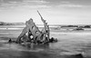 SS Speke Wreck Phillip Island (laurie.g.w) Tags: ss speke wreck phillip island victoria shipwreck coast ocean rocks rust steel australia shoreline sescape waterscape basscoast blackandwhite bw