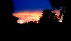 Sunset (Maenette1) Tags: sunset yellow orange blue colors trees sky summer neighborhood menominee uppermichigan flickr365 52weeksofphotographyweek30