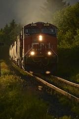 _DSC3024 (Jean EIers-Page) Tags: cnrail trains