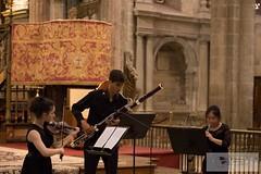 3º Concierto VII Festival Concierto Catedral30